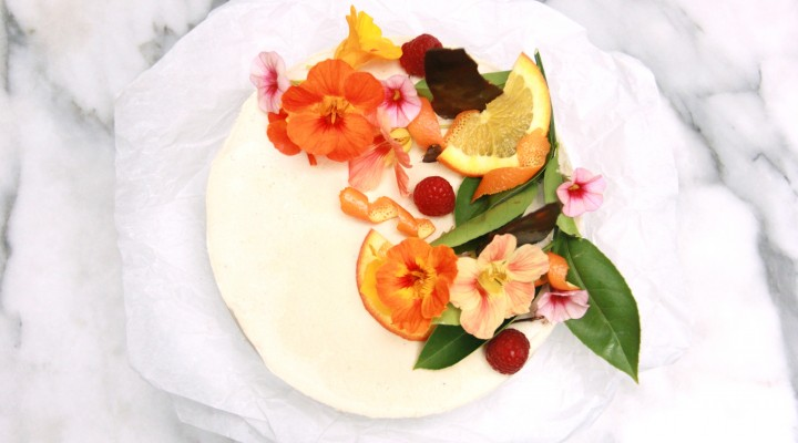 Norbu Raw Cheesecake birdseye2